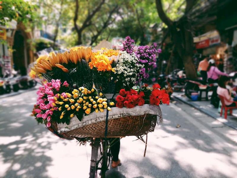 Điều khách Tây ấn tượng về Việt Nam