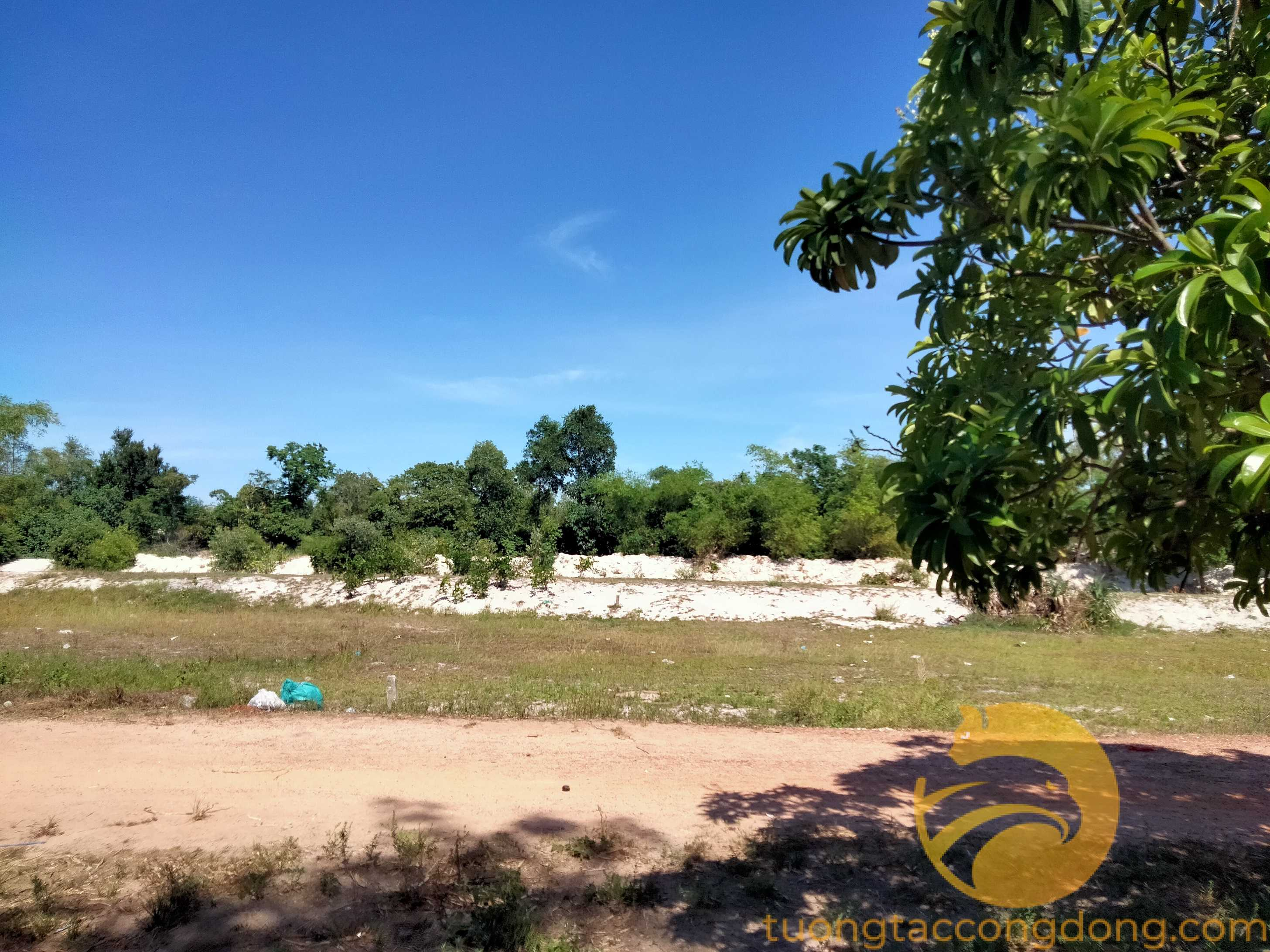Chính chủ bán đất Phong Điền, Huế: Diện tích: 200m2, đường 11,3m